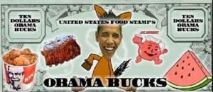 Racist Obama Sign 7